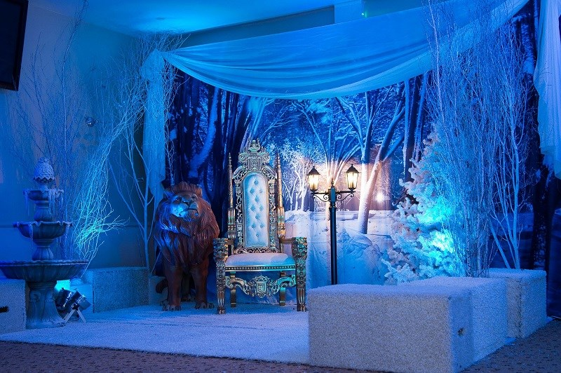 The Magic of Narnia Christmas Party (3)